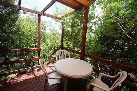 אלוני הדבש במצפה הילה- 3 בקתות עץ רומנטיות הטובלות בטבע הירוק, דיסקרטיות ומחירים נוחים. להשכרה לפי שעות